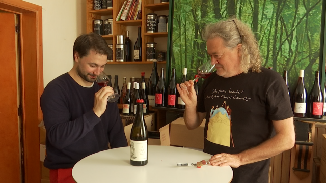 À la découverte des vins bio, biodynamiques et natures