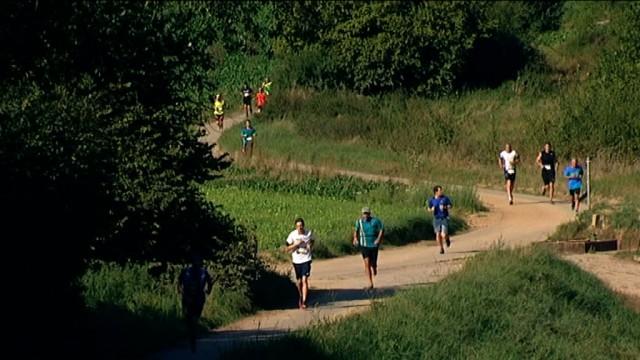 Athlétisme : 422 participants au jogging d'Ottignies