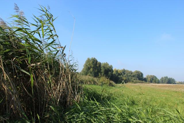 Deux nouvelles réserves naturelles à Perwez