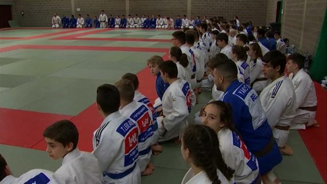 test160 judokas au stage Cédric Taymans à Jodoigne