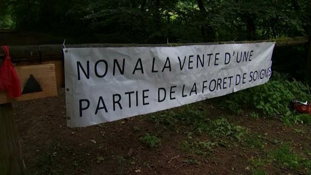 testNon à la vente et à la privatisation d'une partie de la Forêt de Soignes