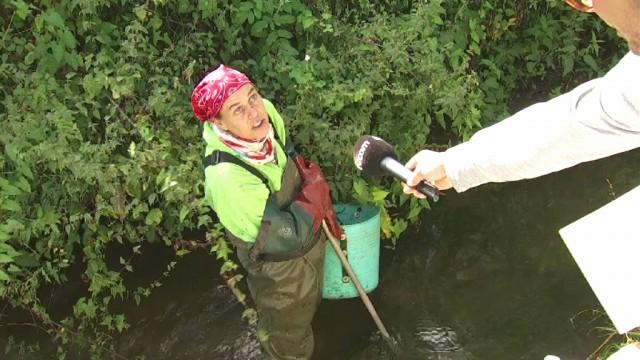 Ann-Laure Furnelle nettoye bénévolement les rivières du Bw !