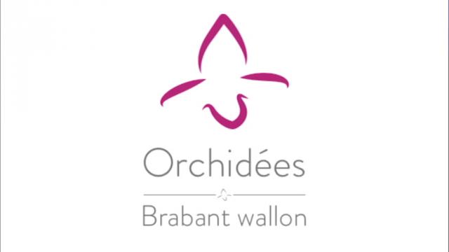 testCérémonie des Orchidées 2017