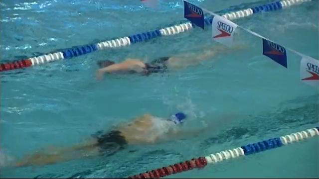 testSite du Paradis à Braine-l'Alleud : le point sur la nouvelle piscine