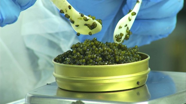 Waterloo : Caspian Tradition importe et conditionne 16 tonnes de caviar par an