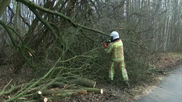 testLes pompiers de Nivelles sont sortis une trentaine de fois lors d'Eleanor