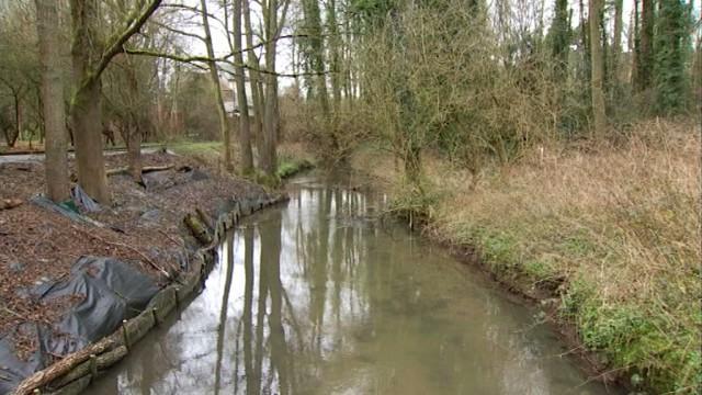 testLe contrat de rivière éradique les envahisseurs du Pont Cassé de la Hulpe