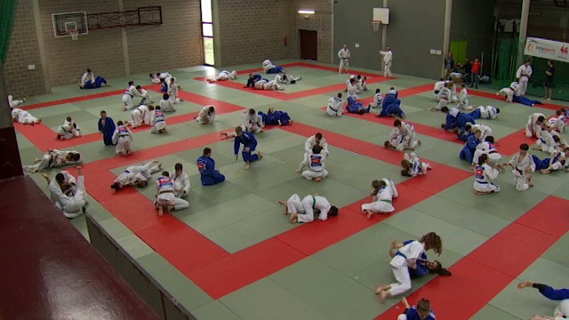 testUn stage de judo de plus en plus au top