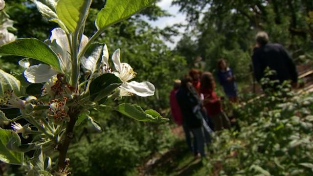 Une formation en permaculture pratique et philosophique