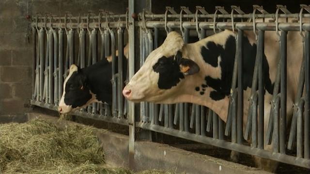 Les Belges satisfaits de leur agriculture, d'après une enquête !