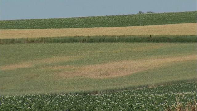 Sécheresse : pas de pénurie d'eau, mais des agriculteurs inquiets