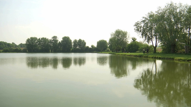 Jugement rendu dans l'affaire de pollution des étangs de Coeurcq à Tubize