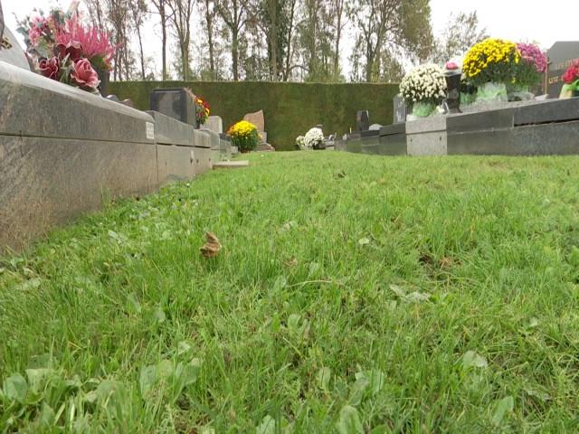 """Incourt : deux nouveaux cimetières labellisés """"nature"""""""