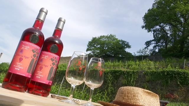 Pour sa première cuvée Regent rosé, Villers-la-Vigne décroche déjà une récompense !