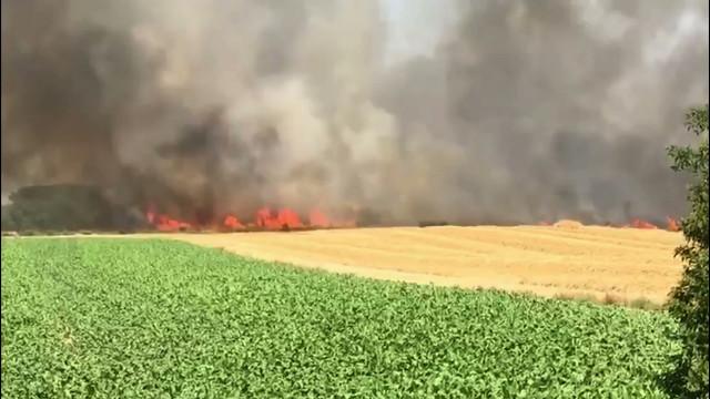 Un champ en feu à Baisy-Thy : incendie sous contrôle et circulation rouverte sur la N5