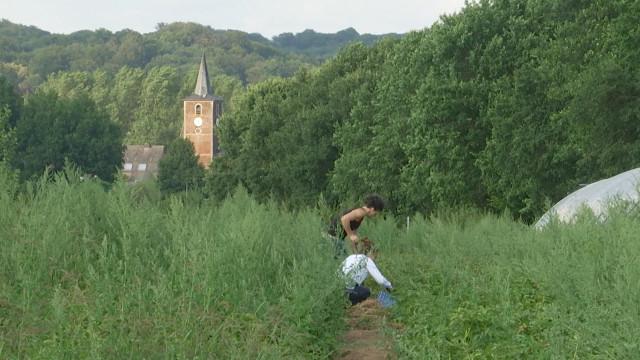 Nethen : renouer avec la nature par le Wwoofing