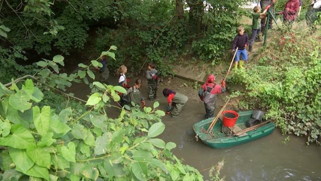 testNettoyage de la Dyle : les jeunes plongent les mains dans la boue