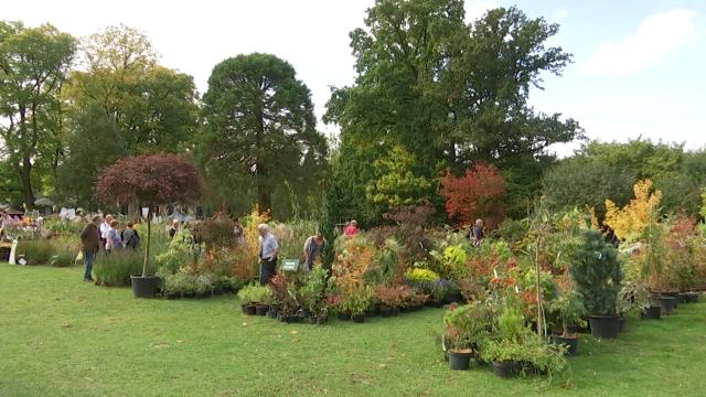 Edition de l'automne de la Fête des Plantes et du Jardin à Lasne
