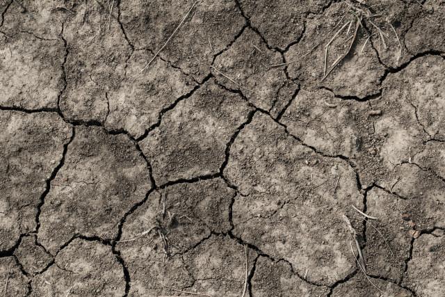 Sécheresse : Utilisez l'eau avec parcimonie, conjure l'in BW