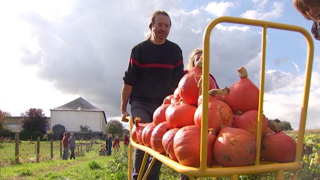 testL'agriculture sociale : le contact avec la terre pour le bien-être