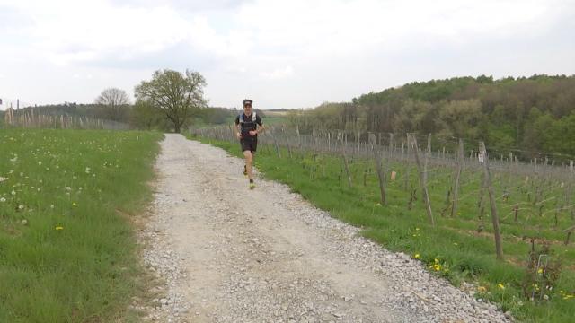 Trail des Cisterciens : jusqu'à 100 kilomètres à travers le BW