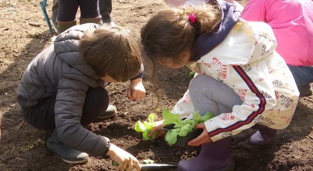 Des potagers dans les écoles grâce au Conseil provincial des jeunes du BW
