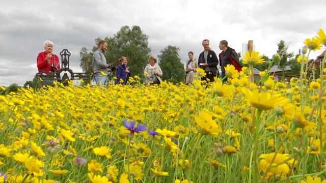 Wallonie en fleurs à Genappe : comment vote le jury?