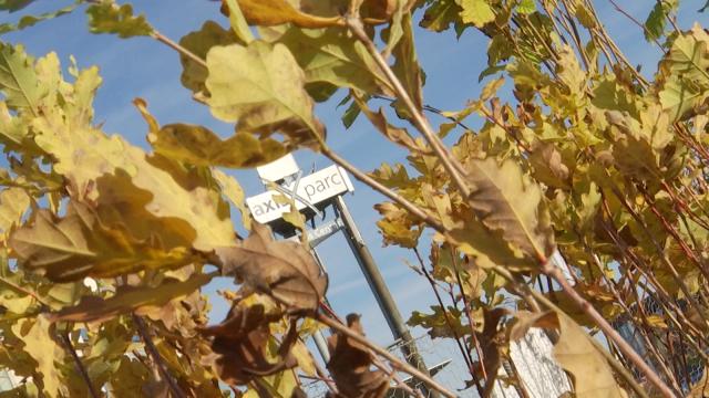 test900 arbres plantés à l'Axis Parc, la première forêt urbaine wallonne