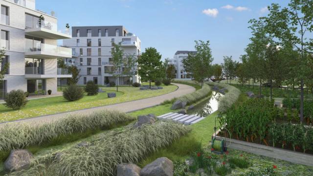 Val de Thines : le futur quartier de Nivelles se dévoile
