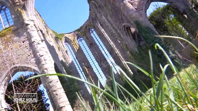 testBienvenue chez vous: de Thuin à l'Abbaye d'Aulne