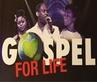 testOttignies-LLN : Concert Gospel for Life