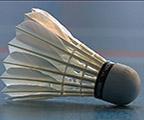 Badminton : Tournoi de la Fine Plume