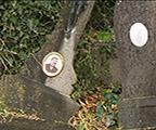 Wavre : 500 nouveaux caveaux au cimetière