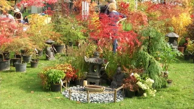 Au coeur des jardins d'Aywiers à Lasne