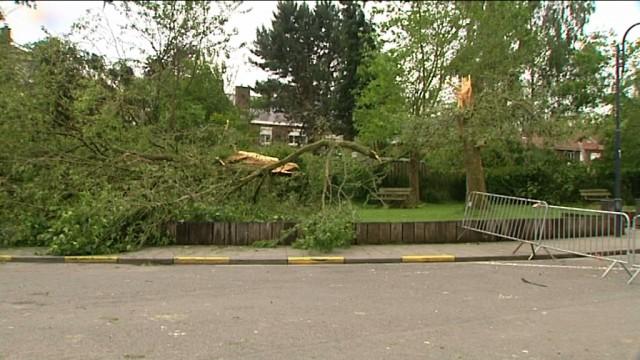 Avis de tempête sur la Belgique : que faire pour éviter les dégâts ?