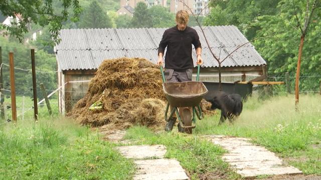 À seulement 17 ans, Basile élève des chèvres et produit son fromage depuis 5 ans