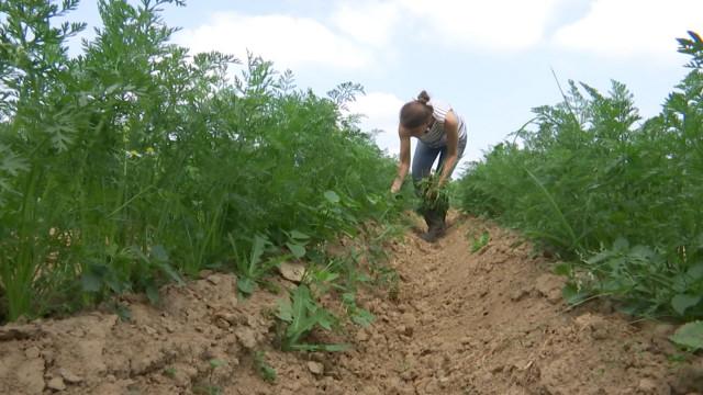 Bousval : une ferme innovante aux multiples activités