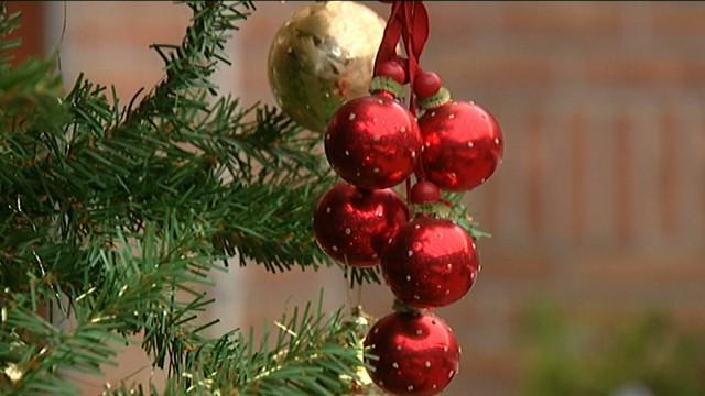 Brabant wallon : ramassage des sapins de Noël
