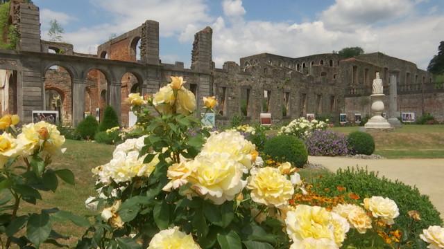 C'est l'été tout l'été dans les ruines de Villers-la-Ville