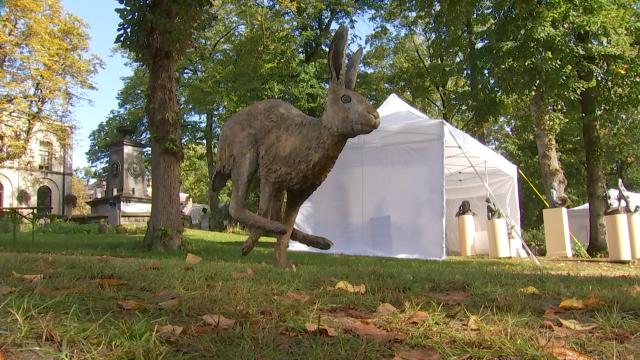Courez à la cinquième biennale de la sculpture de Lasne!