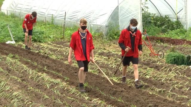 testDes pionniers en camp agricole à la ferme de la Papelotte