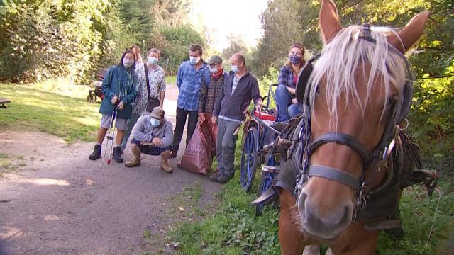 Des porteurs de handicap et un cheval de trait au service de Genappe et Court-Saint-Étienne