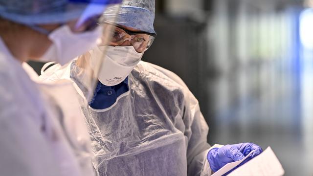 testDeux nouvelles admissions ce dimanche, la situation s'éclaircit dans les hôpitaux