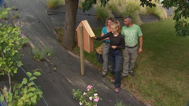 Genappe: les jeunes aux petits soins pour les jardins et les personnes âgées