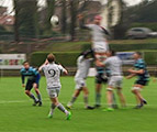 Rugby : ASUB Waterloo - La Hulpe (D1 Nationale)