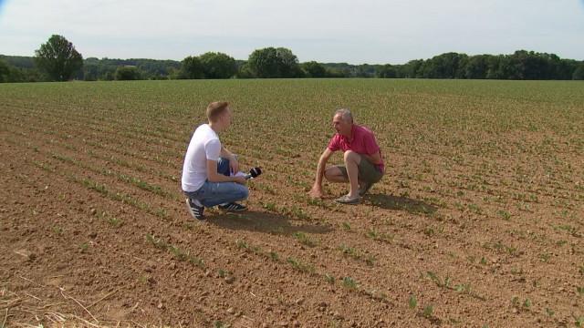 testGrez-Doiceau : les agriculteurs face à la canicule