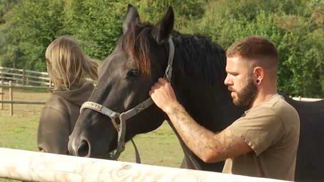 Help Animals ouvre un refuge pour équidés à Braine-le-Château