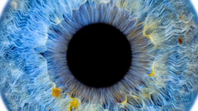 testLasne : Edouard Janssens explore les disciplines de la photographie