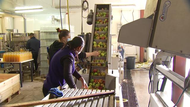 Le pressage de vos pommes à Mont-St-Guibert, à la ferme Dolphens