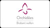 Orchidées 2015 : Castors de Braine